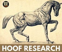 hoof research on The Hoof Blog