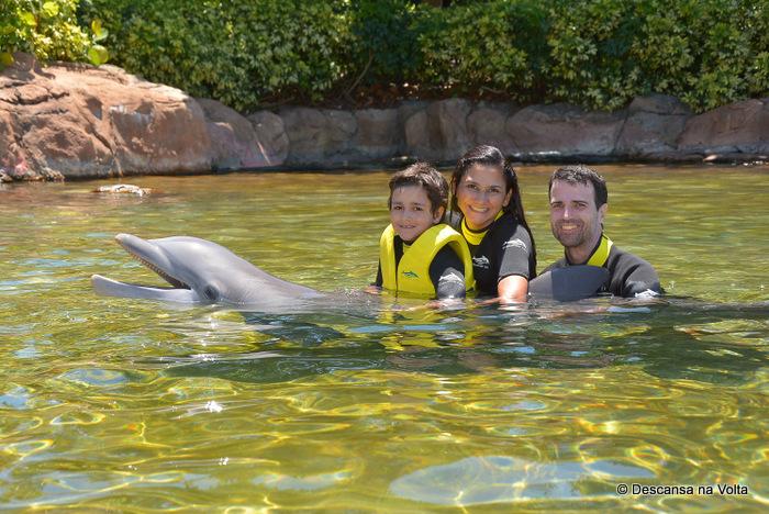 Discovery Cove Nado com golfinhos
