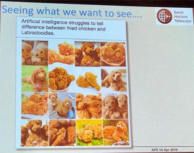 Using AI in astronomy is like identifying difference between labradoodles and fried chicken (Shep Doeleman, EHT Collaboration, APS April Meeting)