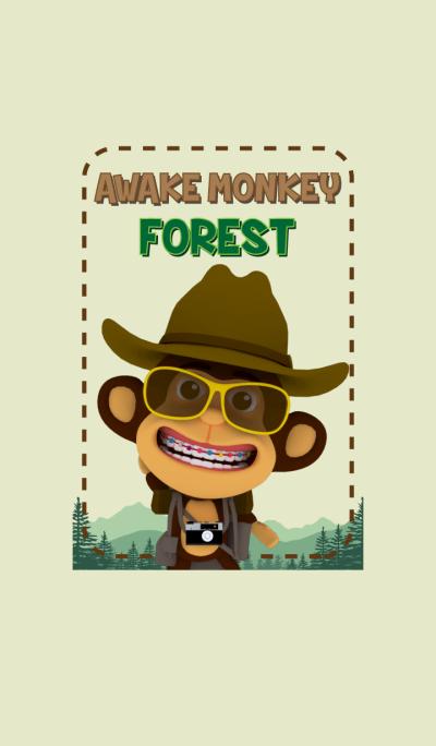 Awake Monkey Forest