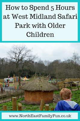 How to Spend 5 Hours at West Midland Safari Park with Older Children