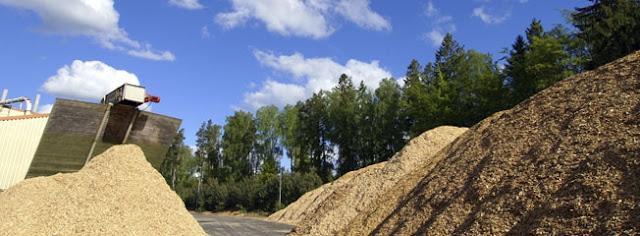 Legislación nociva al sector de la Biomasa