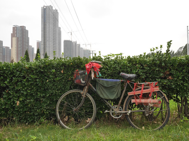 bicycle parked next to some bushes and buildings under construction in the background