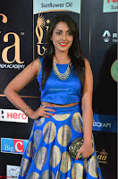 Madhu Shalini Looks Super Cute Slim trim Blue Choli Ghagra IIFA Utsavam Awards 24.JPG