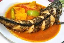 Manfaat Ikan Gabus untuk Kesehatan Tubuh