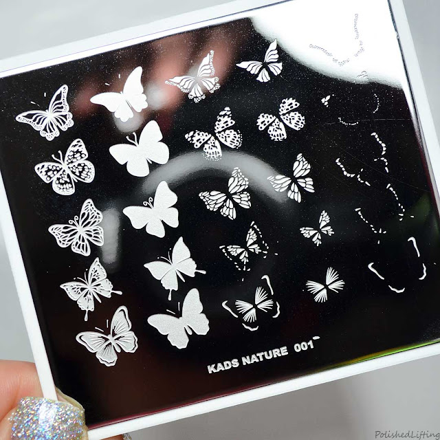 butterfly themed stamping nail plate