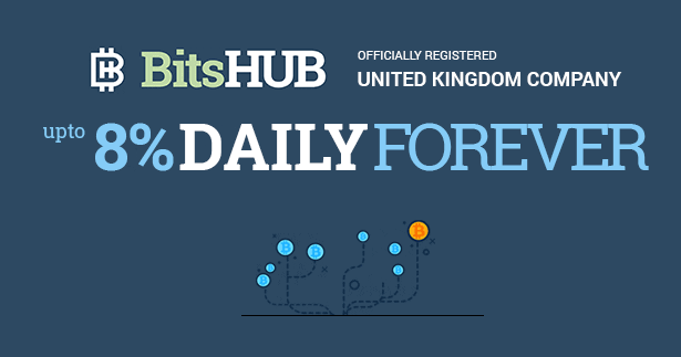 Bitcoin FORUM: BITSHUB investment review