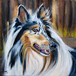 Day 5 , 30 in 30. (painting #2), Collie dog portrait
