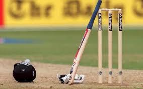 career in cricket