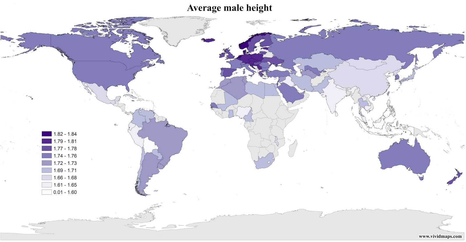 Average male height