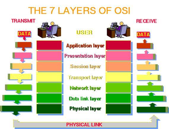 seven cellular levels involving osi
