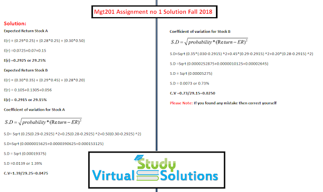 mgt201 assignment no 1 solution sample preview fall 2018