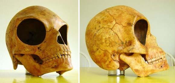 cráneos extraterrestres