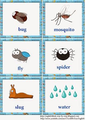 frog vocal flashcards English linguistic communication vocabulary