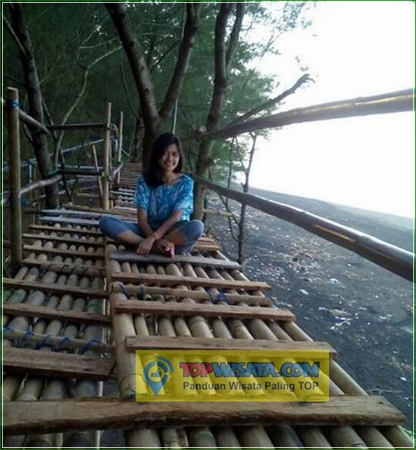 Harga Jembatan Selfie - Pantai Criwik Kebumen - Asyiknya Menunggu Sunset Di Pohon Cemara Udang
