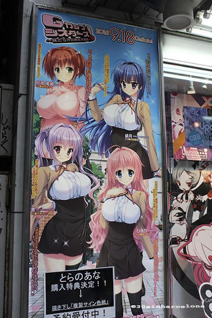 Akibahara advert, Tokyo