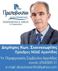 ΔΗΜΗΤΡΗΣ ΣΧΟΙΝΟΧΩΡΙΤΗΣ