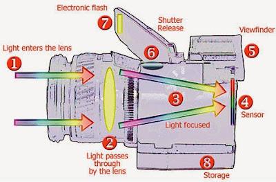 Pengertian, Komponen dan Cara Kerja Kamera DSLR