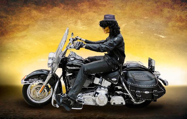 Hot Harley Davidson Bike