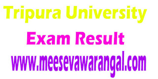 Tripura University BVA II/IV Sem / INC TDP/H List III 2016 Exam Results