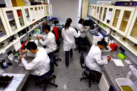 Científicos que realizan investigaciones sobre células madre embrionarias.