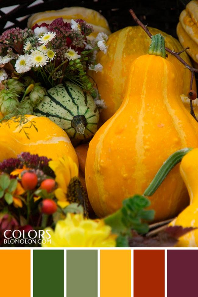 paletas_de_colores_variedad_de_temporada_7