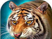 The Tiger MOD APK v1.6.1 (Unlimited Money) free for android
