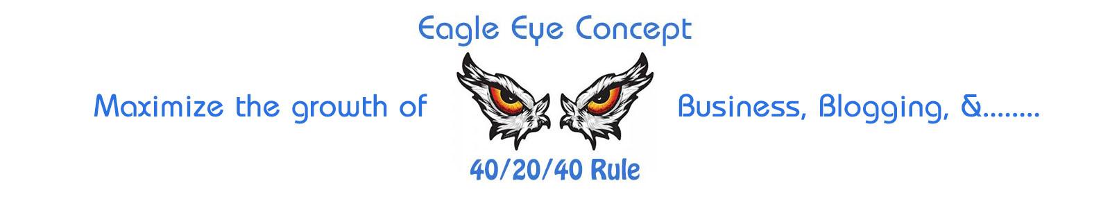 eagle eye concept