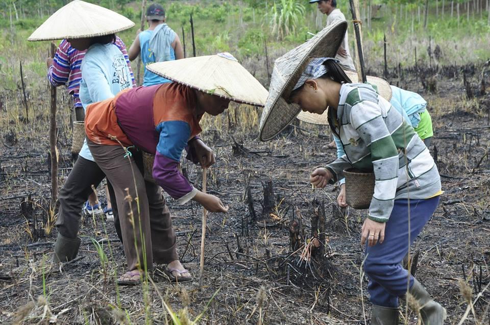 """Pemuda Kalteng Jangan Sibuk Diskusi """"DKI 1"""", Ingat Solusi Untuk Petani Kalteng Masih Belum Jelas"""