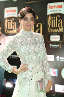 Poonam Kaur in Beautiful Floor Length Gown at IIFA Utsavam Awards 2017  Day 2  Exclusive 31.JPG