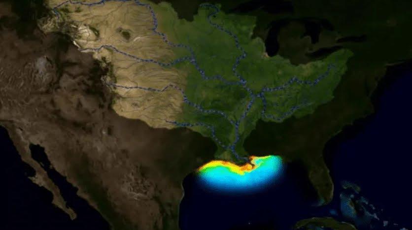 Aumenta Zona Morta Golfo del Messico.