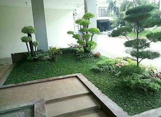 taman klasik minimalis