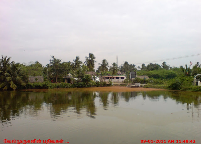 Thiruneelakudi Temple Pond