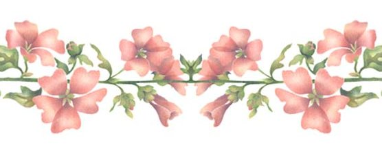 Artbyjean Borders Pretty Borders With Flowers And
