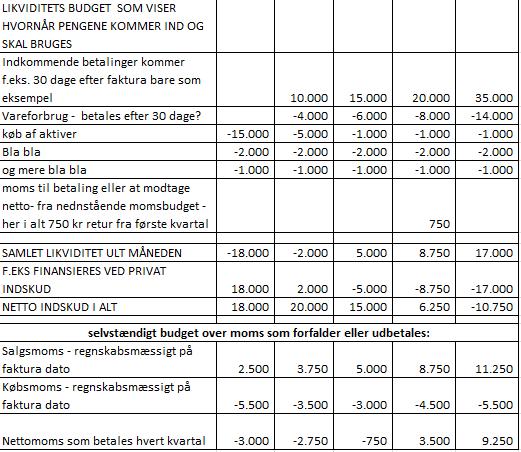 driftsbudget eksempel