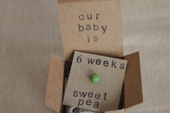 6 Weeks Pregnant Baby Size