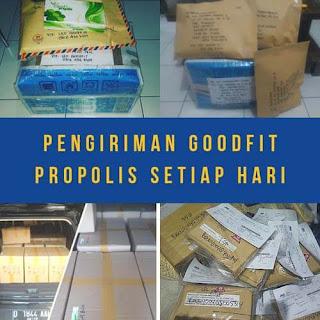 testimony pengiriman propolis