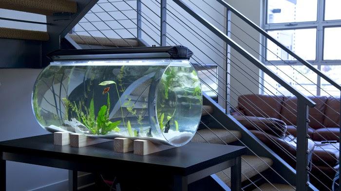 Plastics and tools menerima jasa pembuatan tabung acrylic for 200 gallon fish tank for sale