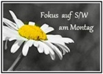 https://wwwchristas-hobbyblog.blogspot.com/2018/11/sw-fokus-woche-48-am-flussufer.html