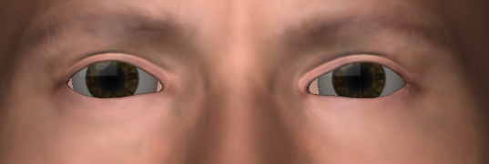 Eyes and Skin | Perceptual evaluation of real-time human