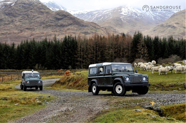 4x4-ecosse, 4x4-scotland, land-rover-ecosse, defender-ecosse, defender-scotland, land-rover-scotland, vaches-highland, vache-ecossaise, highlands-ecosse, blog-ecosse, highland-cow, cow-scotland, tweed, ecosse-luxe, luxury-scotland, tweed-scotland, tweed-ecosse, sandgrouse-travel, kilt-ecosse, kilt-scotland, ecosse-chateau, castle-scotland
