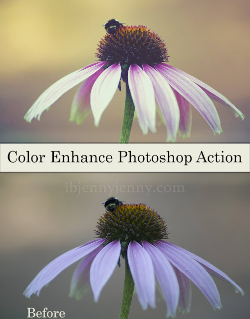 color enhance photoshop action preview