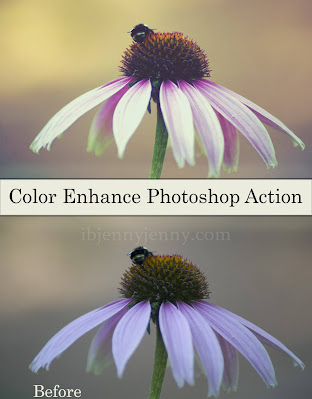 FREE COLOR ENHANCE PHOTOSHOP ACTION