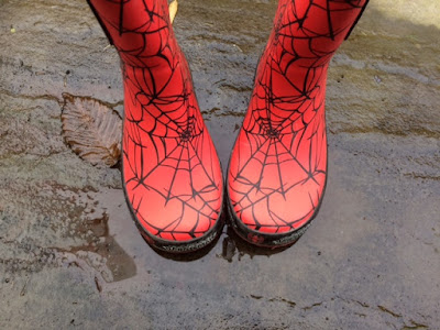 Wellingtons in a puddle
