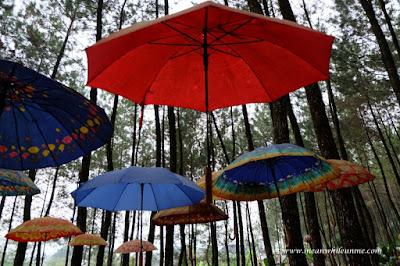 Payung warna warni Curug Lawe petungkriyono
