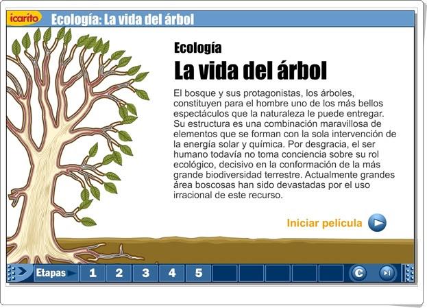 LA VIDA DEL ÁRBOL (Presentación animada de Ciencias Naturales)