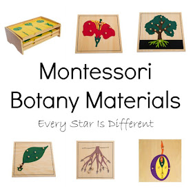 Montessori Botany Materials