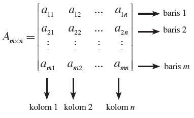 Cover - Cara Menciptakan Matriks Dengan Ordo Di Inputkan Di Java
