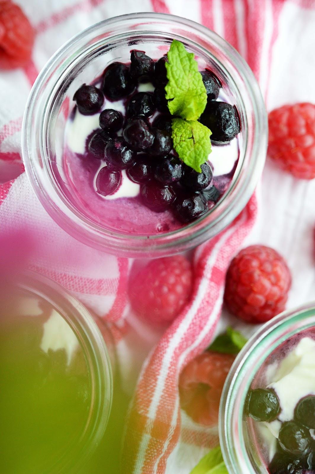 Berry Instant Frozen Yoghurt Recipe | Motte's Blog