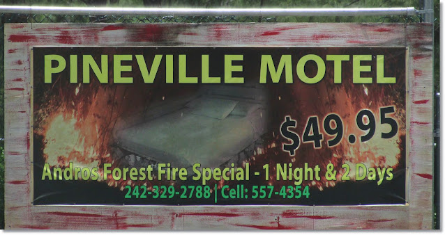 Pineville motel sign.